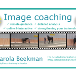 image coaching - introduction offer