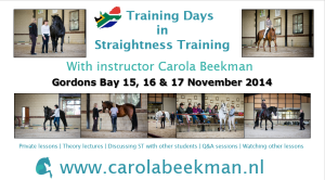 141117 Gordonsbay trainingdays