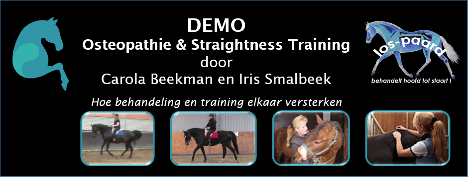 event header demo osteopatie en Straightness Training